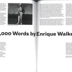 Enrique Walker: Raymond Roussel